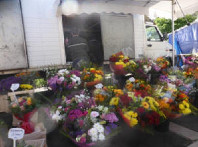 Flower stall at Langeais Sunday market in the Loire Valley