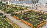 Villandry gardens in the Loire Valley